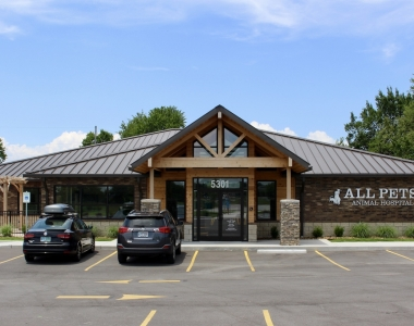 Design Build | All Pets Animal Clinic
